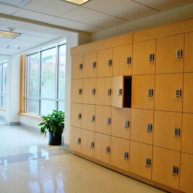 Hamilton Casework Laminate Day Use Lockers